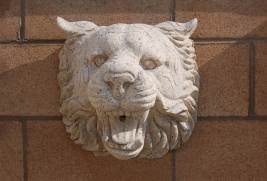 WF0779 – Tiger Head Wall Fountain– Beige Granite